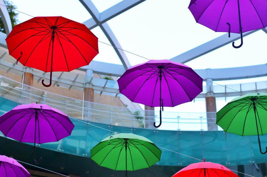 Colorful umbrellas hanging photo | Allenbrook Umbrella Insurance